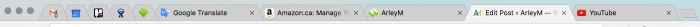 a screenshot of pinned and normal tabs in Chrome